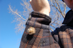 Dang burrs - Another form of burr