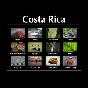 Costa Rica Coffee Brands