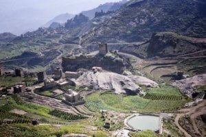 Agriculture, Haraz Mtns (Yemen Coffee Beans being grown)